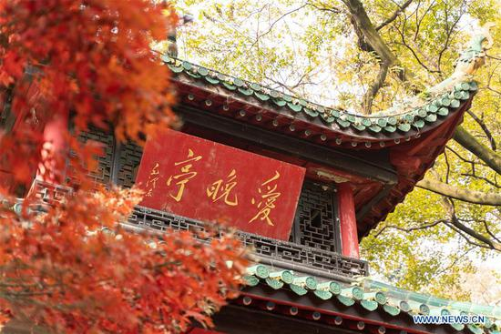 Autumn scenery of Yuelu Mountain in Changsha, Hunan