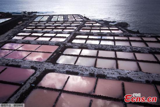 Picturesque views of salt field in Spain