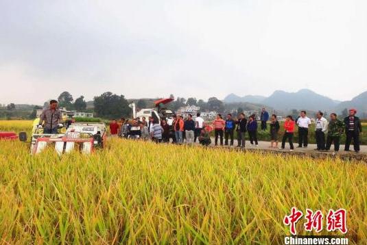 Ways to reduce the urban-rural gap in China