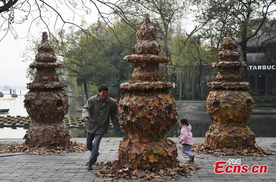 Foliage artworks at West Lake attract visitors