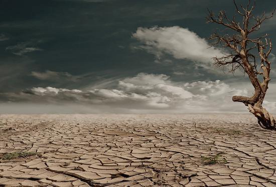 Despite increased rainfall, earth faces widespread drought: Australian study