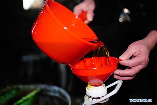 用传统方法制成的山茶油在市场上很受欢迎