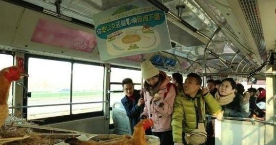Passengers interact with a mechanical chicken coop in the back of a bus in Tianjin as part of a public awareness campaign on Friday. The coop dispenses real eggs to passengers for choosing public transportation. (Screenshot photo)