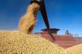 U.S. soybeans drop over 1 pct on demand concerns