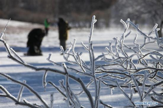 Tourists take photos of frost scenery in China's Inner Mongolia