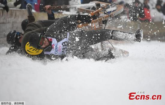 Bavarians race down slopes on horned sleds