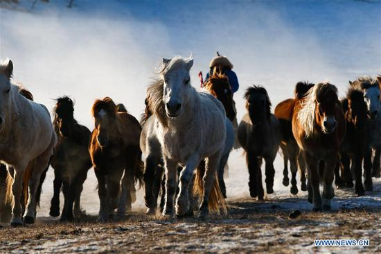 Inner Mongolia greets peak tourism season in winter