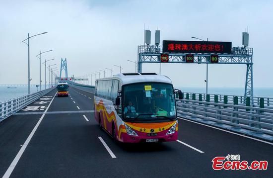 A coach passes the Qingzhou shipping channel bridge, part of the Hong Kong-Zhuhai-Macao Bridge, Oct. 24, 2018. (Photo: China News Service/Zhang Wei)