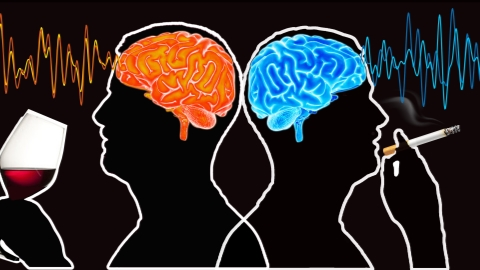 New research links alcohol and smoking with brain's hardwiring