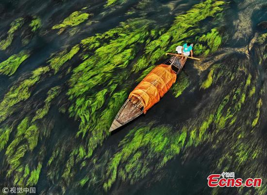 River looks like watercolor painting in Bangladesh