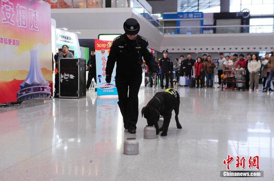 Police dog on safety mission for Spring Festival travel peak