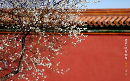 Palace Museum tells Chinese children stories about Twenty-Four Solar Terms