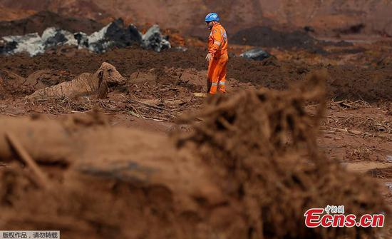 Brazil dam collapse: Death toll rises to 58