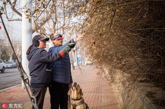 Labor of love for guide dog trainer in Dalian