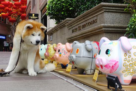 Piglet-themed exhibition promotes saving money in HK