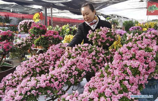 人们在中国河北春节前买花