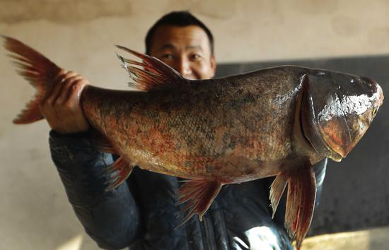 Business is good in the Beijing fish industry