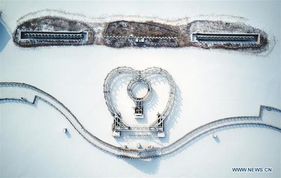 中国西北宁夏银川的雪景