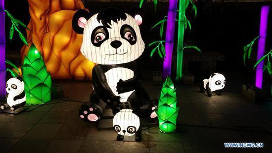 中国元宵节在阿尔巴尼亚首都开幕