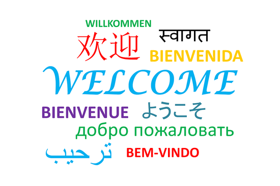 UNGA president urges recovering, preserving indigenous languages