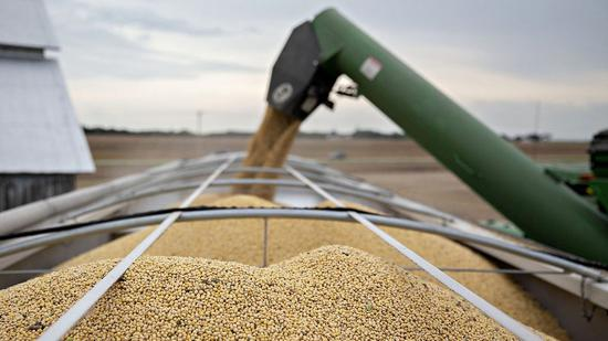 U.S. soybeans rally after trade talks, but close lower weekly