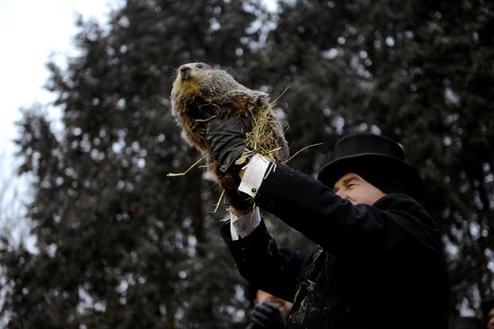 133rd Groundhog Day: Punxsutawney Phil predicts an early spring