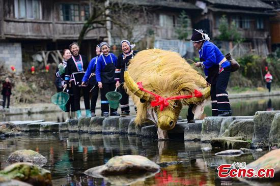 Dong people's traditional farming culture draws tourists