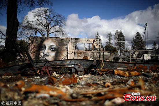 Artist creates beauty in ashes after California fire
