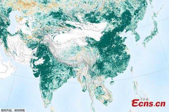 Satellite data shows China leads planet's greening efforts