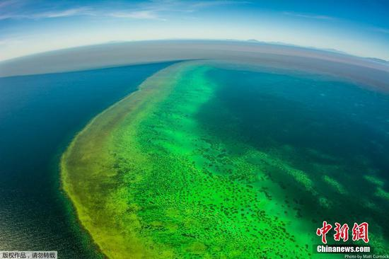 Iconic Great Barrier Reef hit by polluted floodwaters