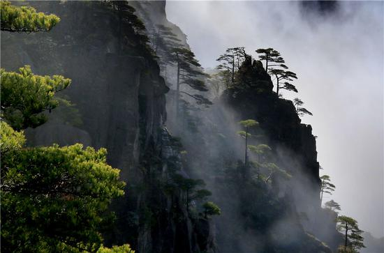 Cloud envelopes Huangshan Mountain after snow