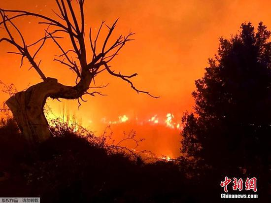 Wildfire spreads in Corsica forest