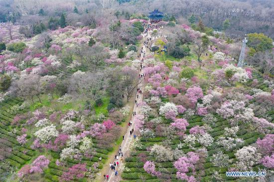 People enjoy scenery of flowers in many parts of China