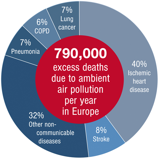 Excess deaths due to air pollution: At least 48 percent of deaths are due to cardiovascular disease (ischaemic heart disease and stroke). (European Health Journal Graphics)