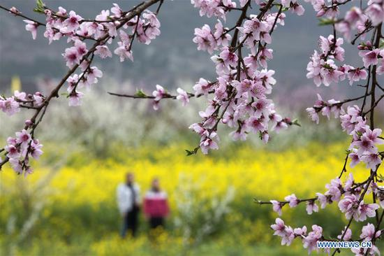 Scenery of early spring across China