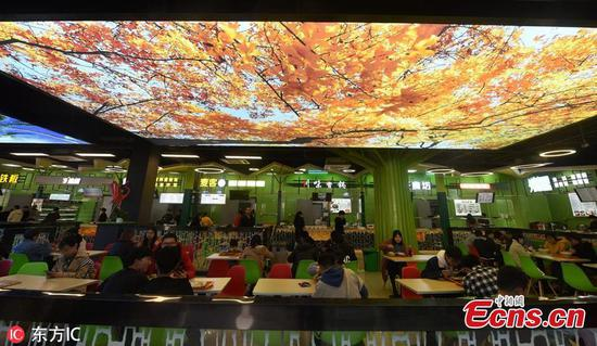 Students dine under natural landscape at university canteen