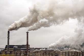 Air pollution linked to infertility in mice: study