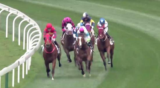 HK racehorses compete in Mainland for the first time