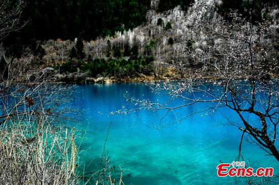 Jiuzhaigou a fairyland in spring