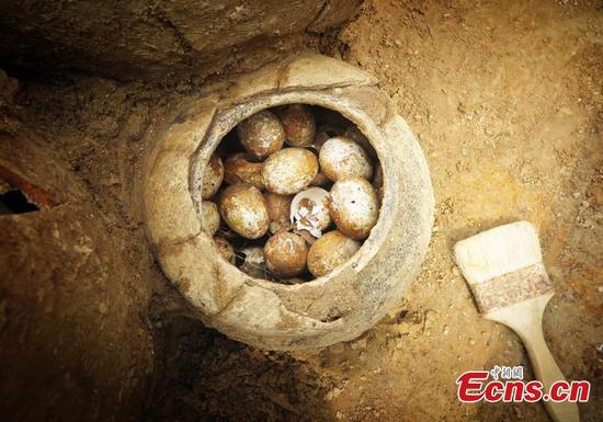 江苏发现2500年历史的盛有蛋壳的罐子