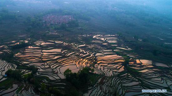 Scenery of Hani terraced fields in Yuanyang County, China's Yunnan