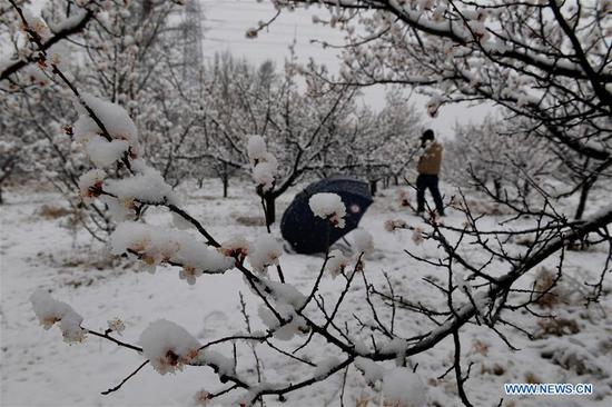 Beijing greets snow in April