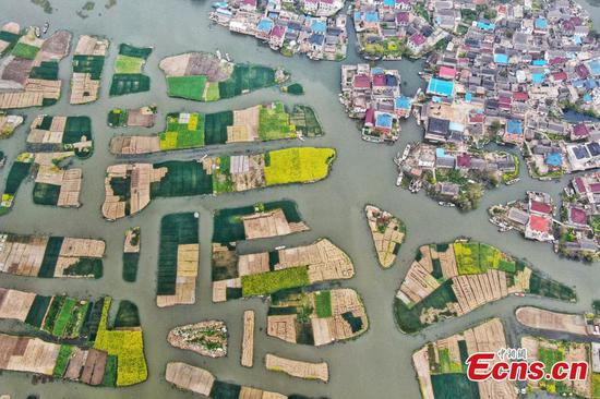 Land plots form beautiful view in Jiangsu