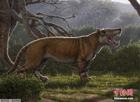 Giant ancient 'lion' discovered in Kenya