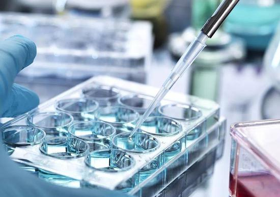 New therapy offers hope for bone marrow cancer
