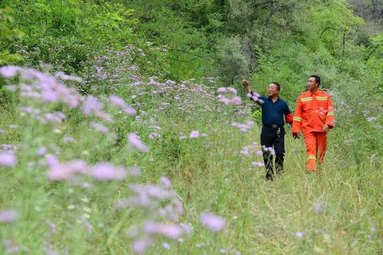 Two forestry rangers from Yan'an, Shaanxi province, inspect a restored valley. (Photo/Xinhua)
