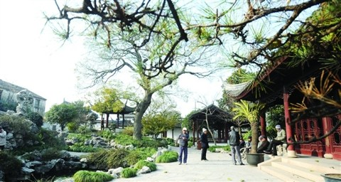 What you should know about graceful Chinese gardens