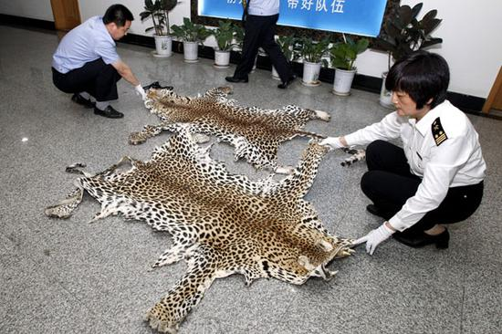 Logistics giants issue convention against wildlife trade