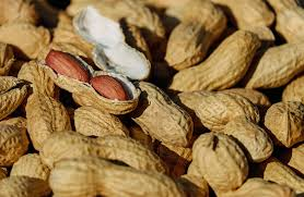 Int'l research team completes peanut genome sequencing