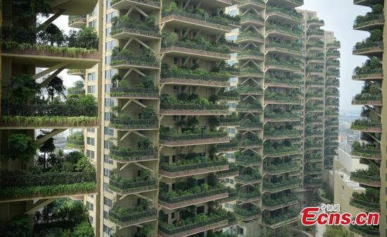 Vertical forest residential community sprouting in Chengdu